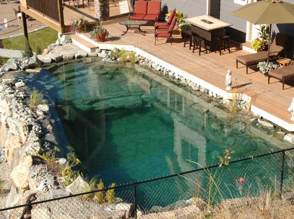 schwimmteiche die sch ne kombination von gartenteich und schwimmen. Black Bedroom Furniture Sets. Home Design Ideas